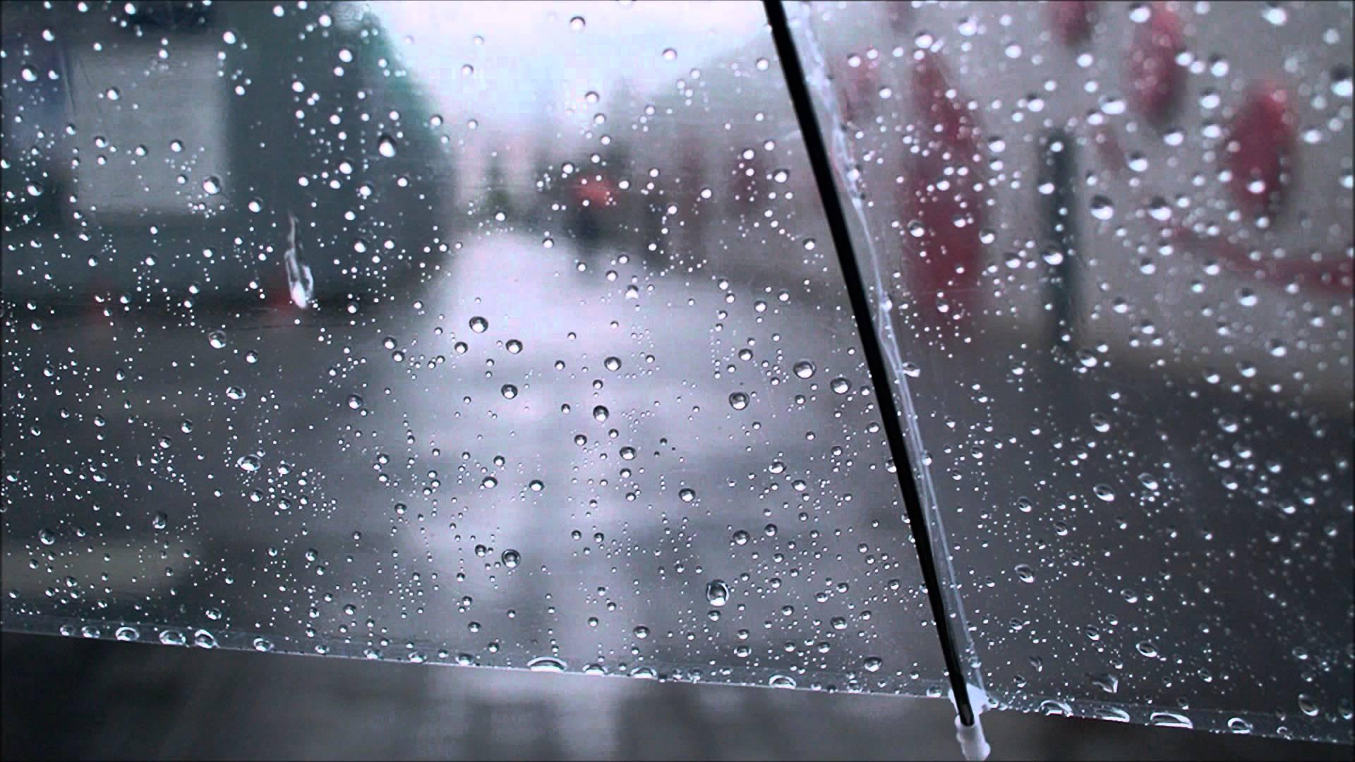 [내일날씨] 전국 흐리고 '비'···오전 중 대부분 그쳐