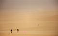 13년째 '사막 달리기', 제가 왜 그러냐면요...