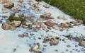전북서 또 화학물질 유출사고... 용담댐 유입 가능성