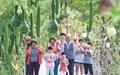 [사진] 대로장수마을 호박축제 구경오세요