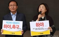 정의당, '박근혜 하야 촉구 행동'에 역량 집중