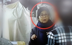 박근혜 대통령은 줄곧 '식물 대통령'이었다