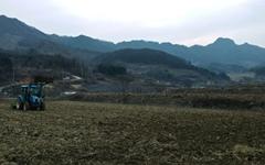 [모이] 몇 해째 봄 가뭄, 비 온다는 소식이 반갑다
