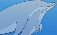 [만평] 돌고래를 바다로