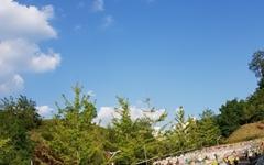 [모이] 한지 그리고 파란하늘의 조화