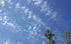 하늘, 나무, 구름에 스페인을 담다