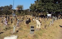 짐바브웨 빅토리아폴즈시티를 아시나요?