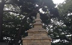신라 불교의 초전지, 구미와 불교문화