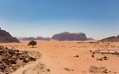 요르단 사막에서 바라본 은하수 흐르는 밤하늘