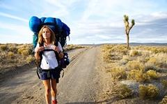 4300km의 행군, '환상적인' 고통의 삶 속으로 들어가기
