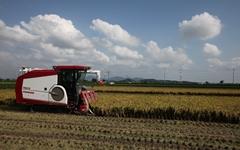전국 1위 쌀생산 지역 당진, 논을 밭으로 전환하라고?