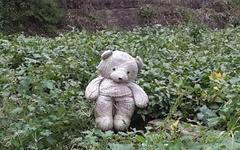 콩밭에 나타난 곰아, 무엇이 그리도 슬프니?