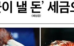 강정마을 구상권 철회, 아직도 '외부세력' 타령하는 <조선일보>