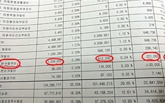 2억원 증액된 연구용역비... '남발'