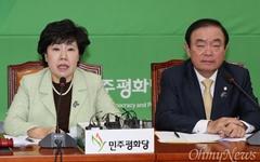 """급물살 탄 평화-정의 공동교섭단체 구성... """"17일 추가 논의"""""""