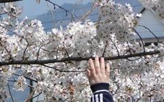 [모이] 봄날, 가슴 졸이는(?) 야외수업... 왜?