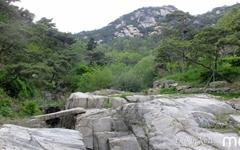 [모이] 물소리가 좋아 이름지은 도심속 계곡