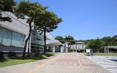 국립부여박물관 특별전 '개태사 태평성대를 열다'