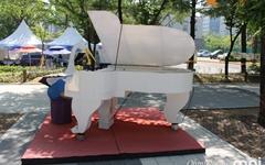 [모이] 앗~ 두루미가 피아노를 치네!
