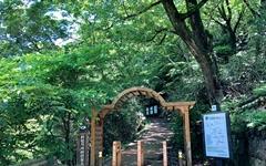 6월에 걷기 좋은 구례의 숲길