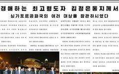 """싱가포르 야간 참관 김정은 """"귀국 지식·경험 배우려"""""""