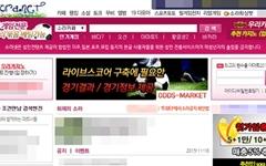 '회원수 100만' 소라넷 운영자 자진귀국... 경찰 구속