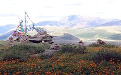 '한참'이란 말, 몽골에서 유래했다