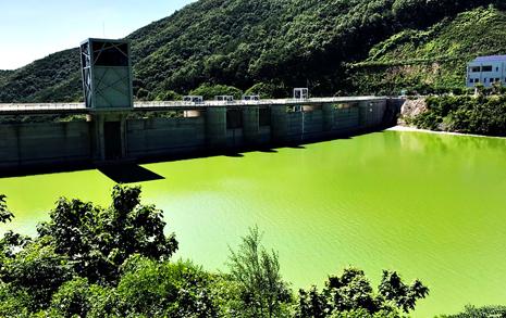 3334억 혈세 퍼부은 2200만톤 규모 '녹조라떼' 댐