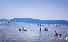 태안반도 몽산포해변은 갯벌체험 천국