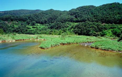땀 흘리며 찾아간 강원도 오지 마을, 20년 전 풍경이