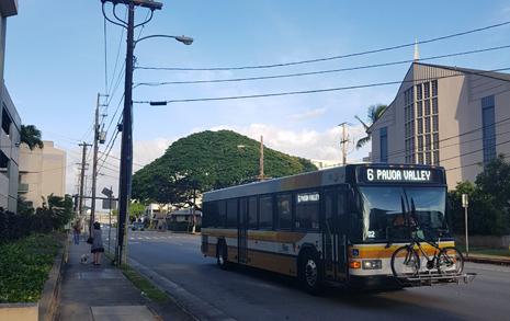 언제 도착할지 모르는 '하와이 버스'... 우리가 놓치고 사는 것