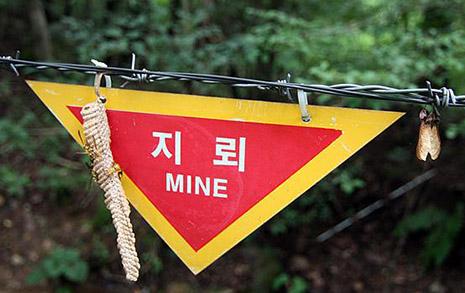 김학용 의원님, '비양심적  병역거부자'나 신경쓰길