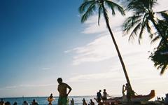 전세계인 몰리는 하와이, 백사장은 왜 더 깨끗할까