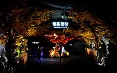빛으로의 환상 여행 '광명동굴'
