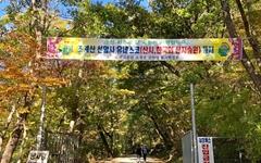 [모이] 유네스코 문화 유산 선암사에 없는 네 가지