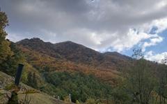 [모이] 검단산에 오르니... 한눈에 들어오는 가을