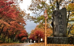 [모이] 화려했던 구례의 가을을 보내며