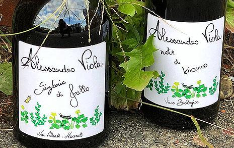 '신밧드'도 만들어 마신 자연의 선물, 내추럴 와인
