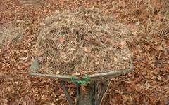 낙엽을 농사에 활용하면 생기는 이득