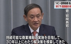 고래고기 먹으려고 국제기구 탈퇴한 일본... 국제사회 비난