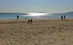 명사십리 겨울바다, 모래 우는 소리 들어 보실래요