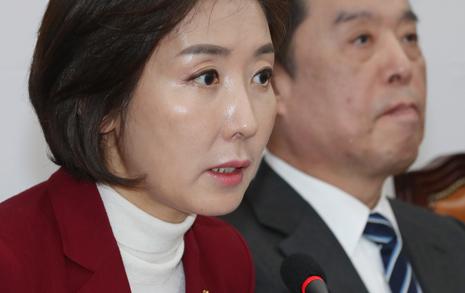 """손혜원+영부인 엮은 한국당... 청 """"초현실적 상상력"""""""