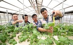 한국-볼리비아 농업·환경을 책임질 코피아 청년들