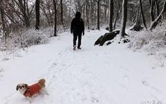 [모이] 눈이 내리면 비단결 같은 능선이 이어지는 산