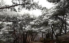 [사진] 3월에 만난 귀한 눈풍경