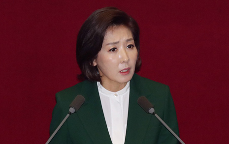 내각제 포기 못하는 한국당, 보수에게 유리할까?