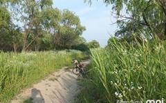 [모이] 여름철 자전거 여행자의 고마운 친구