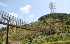 [당진의 걷기 좋은 길] 초록빛으로 물든 삼선산수목원