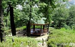 [모이] 자연 속 무더위 쉼터 '산림욕장 정자'