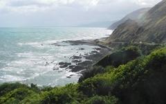 뉴질랜드 작은 마을에서 렘브란트의 작품을 보는 행운
